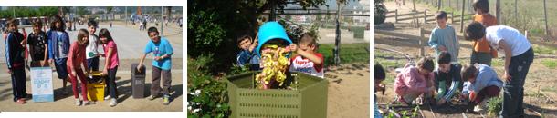 Projectes sostenibles a les escoles
